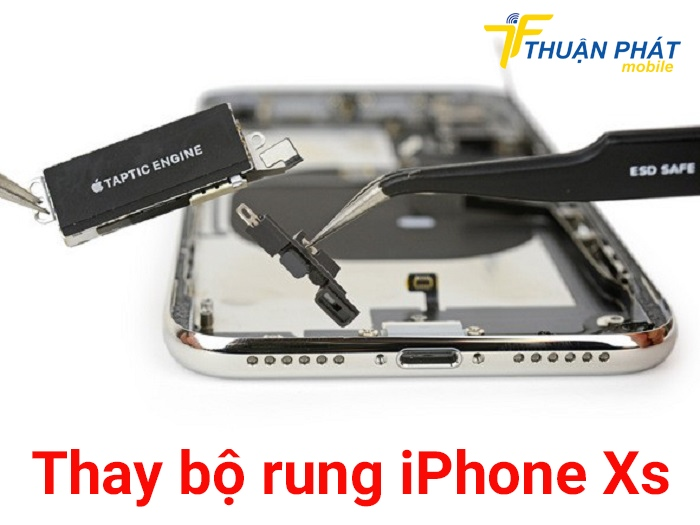 Thay bộ rung iPhone Xs