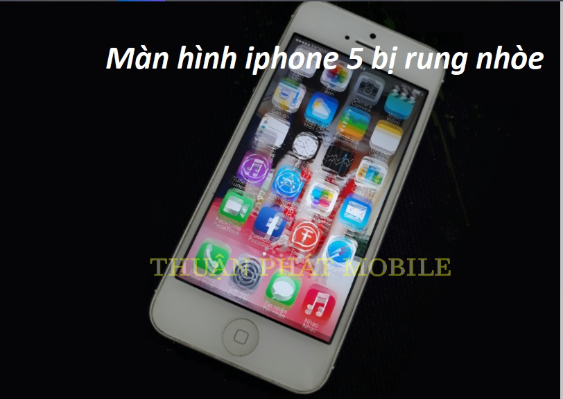 man hinh iphone 5 bi rung nhoe.jpg