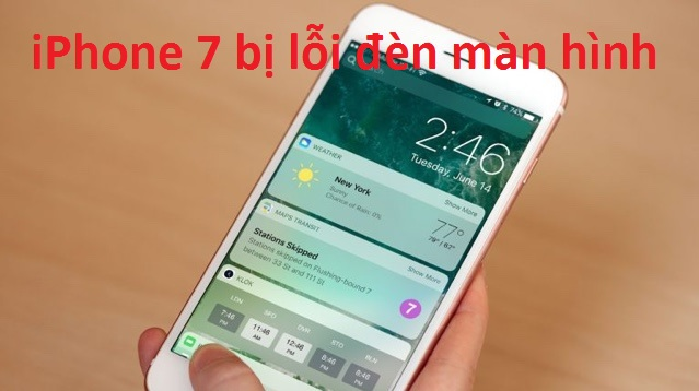 iphone 7 bi loi man hinh
