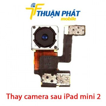 thay-camera-sau-ipad-mini-2