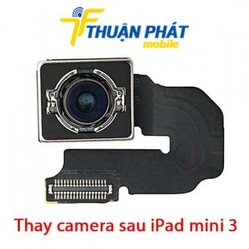 thay-camera-sau-ipad-mini-3