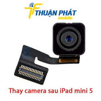 thay-camera-sau-ipad-mini-5
