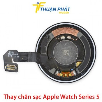 thay-chan-sac-apple-watch-series-5