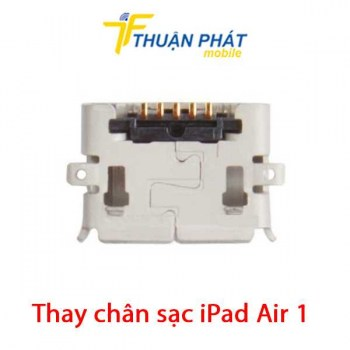 thay-chan-sac-ipad-air-1