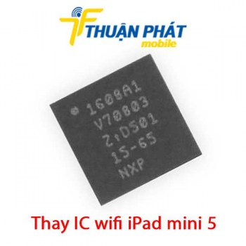 thay-ic-wifi-ipad-mini-5