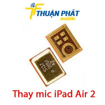 thay-mic-ipad-air-2