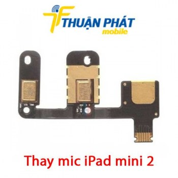 thay-mic-ipad-mini-2