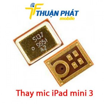 thay-mic-ipad-mini-3