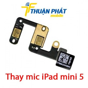 thay-mic-ipad-mini-5