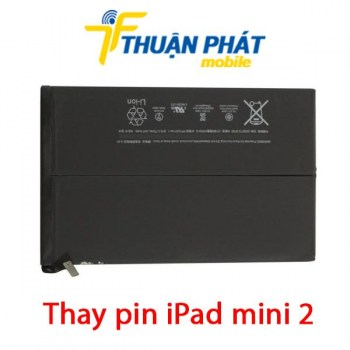 thay-pin-ipad-mini-2